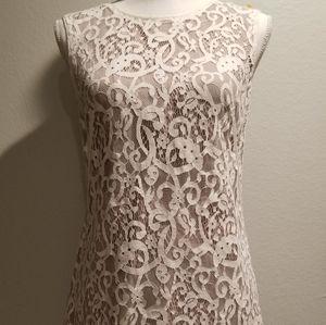 Loft Lace Mini Shift Dress Sz 2